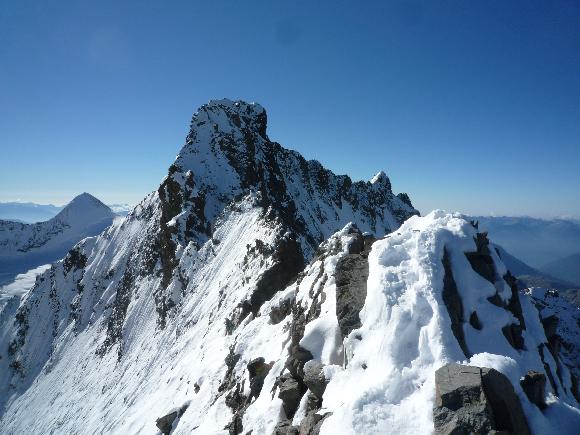 Übergang von Piz Bianco auf den Piz Bernina