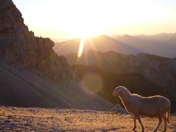 Sonnenaufgang auf rund 2400hm